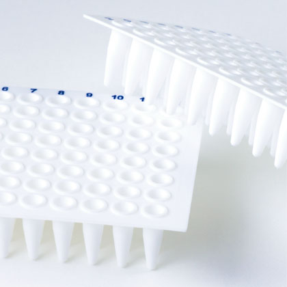 PCR Products